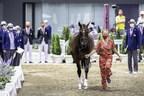 Jeux olympiques de Tokyo 2020 - Inspection des chevaux du concours complet
