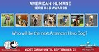 Meet America's Top Dogs! Seven Remarkable Canines Named Finalists for 2021 American Humane Hero Dog Awards®