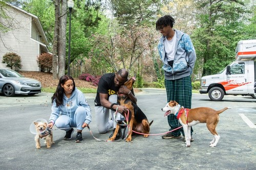 The coming eviction crisis will affect pets, too