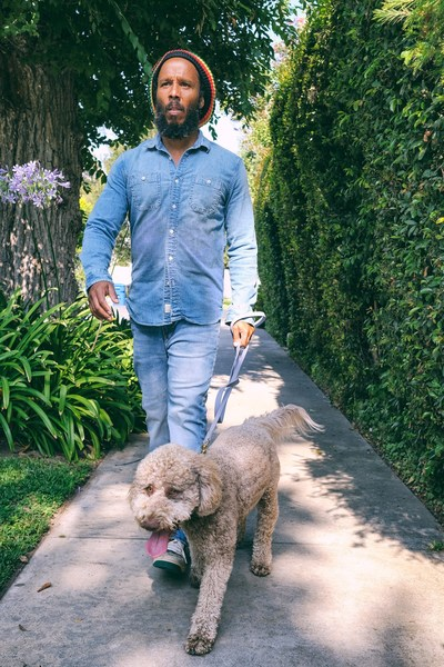 Musician Ziggy Marley walking his puppy Romeo