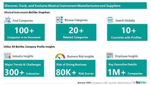 Snapshot of BizVibe's musical instrument supplier profiles and categories.