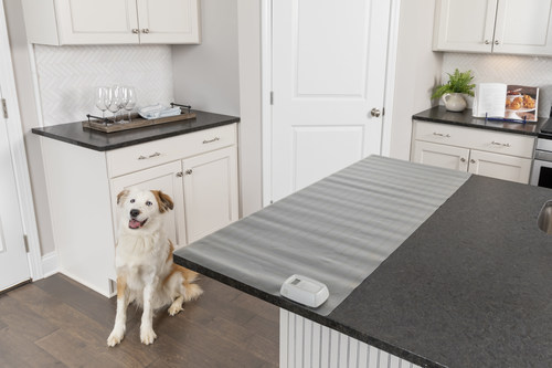 The ScatMat® Indoor Pet Training Mat shown on the counter in a kitchen with a large dog sitting nearby on the floor.