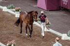 JUEGOS OLÍMPICOS DE TOKIO 2020 - Inspección de caballos, sorteo de saltos por equipos