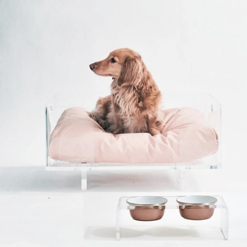 Interior Designer Tracey Butler, known for her high-end modern Lucite furniture, now offers a stylish line for pet owners who demand function and form at ShopHiddin.com