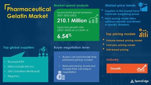 Pharmaceutical Gelatin Market Procurement Research Report