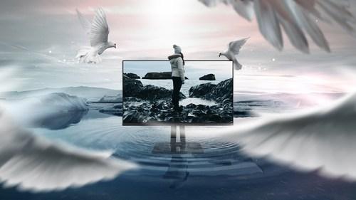 ViewSonic presenta la serie de monitores ColorPro VP56 que están diseñados para creadores.