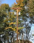 Huxford Pole & Timber Company Begins UltraPole NXT Production...