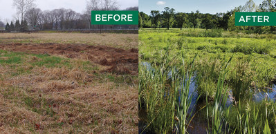 Since founding in 1998, Ecotone has restored more than 33 miles of streams and riverine environments and 1,250 acres of wetlands and habitats.