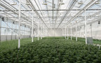 Aurora Cannabis Marks Successful Inaugural Fulfillment for French ...