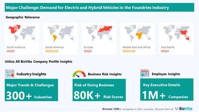 Snapshot of key challenge impacting BizVibe's foundries industry group.