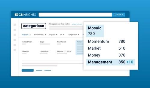 Management Mosaic score on the CB Insights platform
