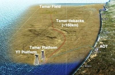 Tamar Field Map