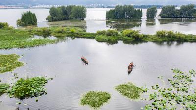 एरियल फोटो से पता चलता है कि दक्षिण पश्चिम चीन के युन्नान प्रांत की राजधानी शहर कुनमिंग में डियानची झील के पास योंगचांग वेटलैंड पार्क में रखरखाव कर्मचारी काम करते हैं