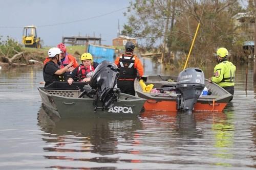 ASPCA Assists Nearly 200 Animals Impacted by Hurricane Ida