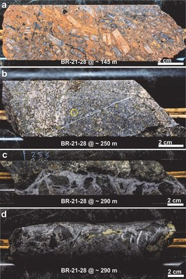 Figure 2: Textural examples of mineralization present in the first drill hole of the season BR-21-28: (a) megacrystic syenitic porphyry with fine disseminated pyrite ± chalcopyrite, (b) abundant disseminated chalcopyrite and pyrite hosted in an equigranular quartz monzodiorite,  and (c and d) blebby chalcopyrite and pyrite hosted in a carbonate-rich breccia vein with chlorite-rich selvages. (CNW Group/Libero Copper & Gold Corporation.)