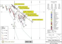 Drillhole sections (CNW Group/Trillium Gold Mines Inc.)