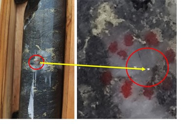 Figure 2.CD-065's visible gold grain, circled (left), associated with steeply dipping structure. Right is a magnified view of the visible gold from CD-065. (CNW Group/Meridian Mining S.E.)