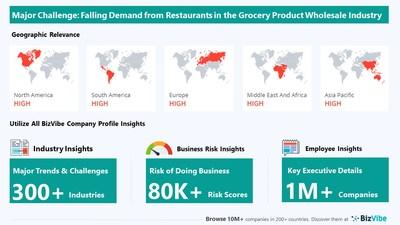 Snapshot of key challenge impacting BizVibe's grocery product wholesale industry group.