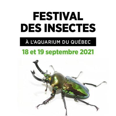 Les 18 et 19 septembre prochains, 10?000 spécimens naturalisés et vivants envahiront l'Aquarium du Québec pour une nouvelle édition automnale du Festival des insectes, présenté en collaboration avec la Bibitte Mobile. (Groupe CNW/Société des établissements de plein air du Québec)
