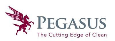 Pegasus leads the way in comprehensive cleaning and maintenance solutions.