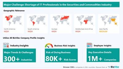 Snapshot of key challenge impacting BizVibe's securities and commodities industry group.
