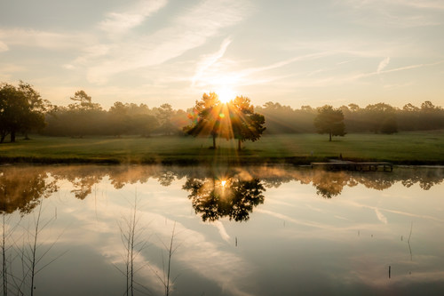 The stunning scenery at Republic Grand Ranch, the next great acreage community in Texas. 2+ acre homesites north of The Woodlands and Houston.