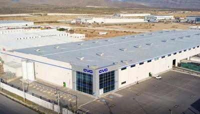 CVG plant