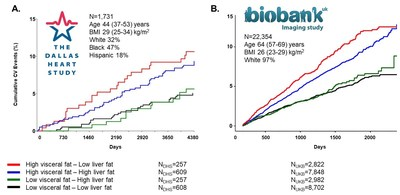 Recent publication shows data from the Dallas Heart Study and UK Biobank links discordant phenotype with cardiometabolic outcomes