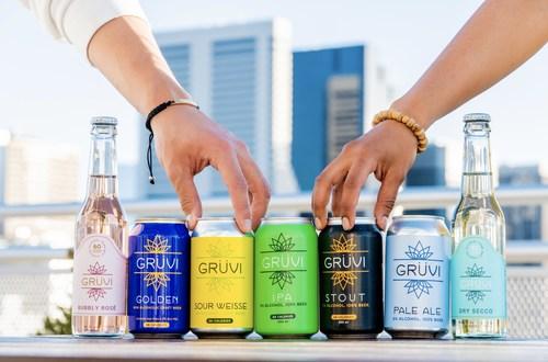 Gruvi product lineup