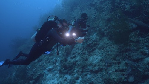 Fabien Cousteau conducts site mapping for Proteus in the waters of Curaçao