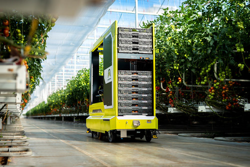 MetoMotion's GRoW robot in a cherry tomato greenhouse