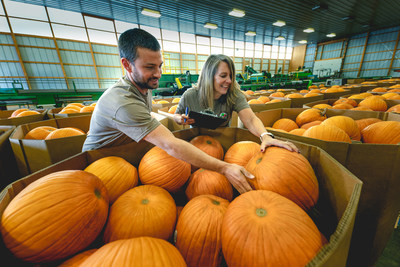 As families prepare for Halloween, retailer Meijer expects to sell more than 500,000 locally grown pumpkins across the Midwest for carving or decorating.