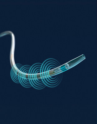 EkoSonic(tm) Endovascular System