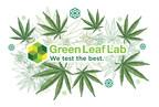Un nuevo virus del cannabis y lo que esto significa para los...