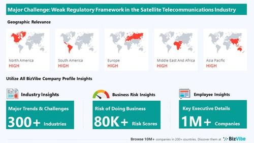 Snapshot of key challenge impacting BizVibe's satellite telecommunications industry group.
