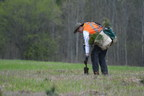 安大略省森林在这个种植季节种植了280万棵树