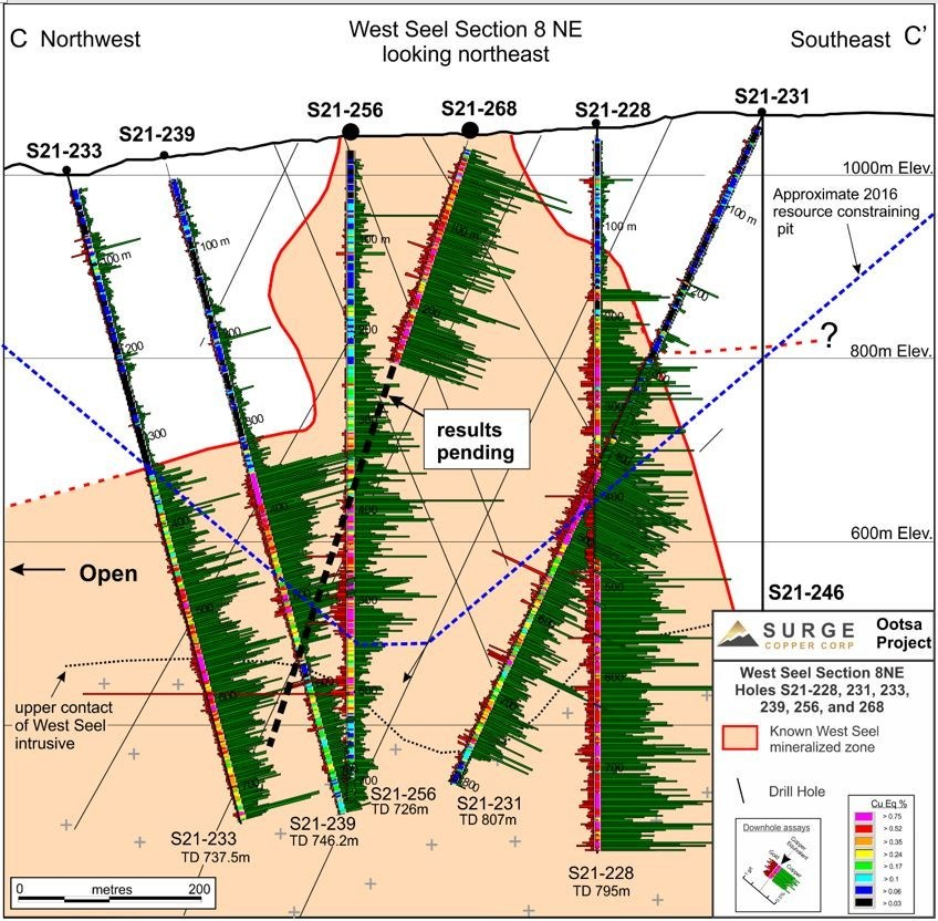 Figure 4. West Seel cross section C-C' showing results for holes S21-228, 231, 233, 239, 256, and partial results for S21-268. See Figure 1 for section location (CNW Group/Surge Copper Corp.)