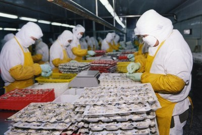 Oyster processing facility