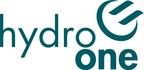 28个土著自有企业与加拿大土著企业理事会合作,获得新的Hydro One商业赠款