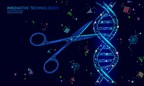 A Hypercompact CRISPR Technology Developed by GenKOre is deemed a Potential Game Changer in Gene Therapy.