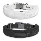 The New Halo Collar, the Go-Anywhere Wireless Fence, Launches in...