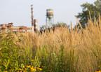 Des mesures concrètes pour construire un Sud-Ouest plus vert et plus durable