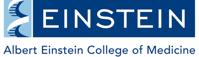 Albert Einstein College of Medicine Logo. (PRNewsFoto/Albert Einstein College of Medicine)