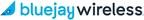 Blue Jay Announces Brandi Streauslin as Director of Regulatory Compliance