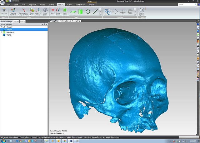 Geomagic Wrap(R) can be used to create mesh files for subsequent 3D printing.  In addition, the data may be exported to Freeform(R) for performing facial reconstruction