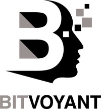 BitVoyant is a provider of cyber-derived intelligence and proactive defense solutions (PRNewsFoto/BitVoyant)