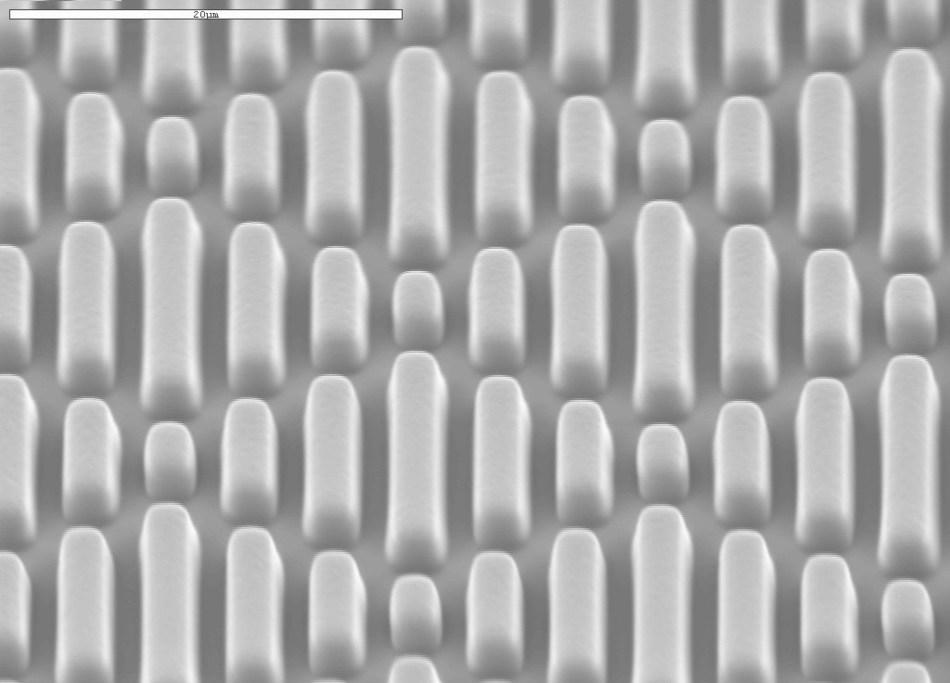 Sappi Neoterix ST Micropattern