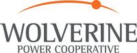 Wolverine Power Cooperative Logo (PRNewsFoto/Wolverine Power Cooperative)