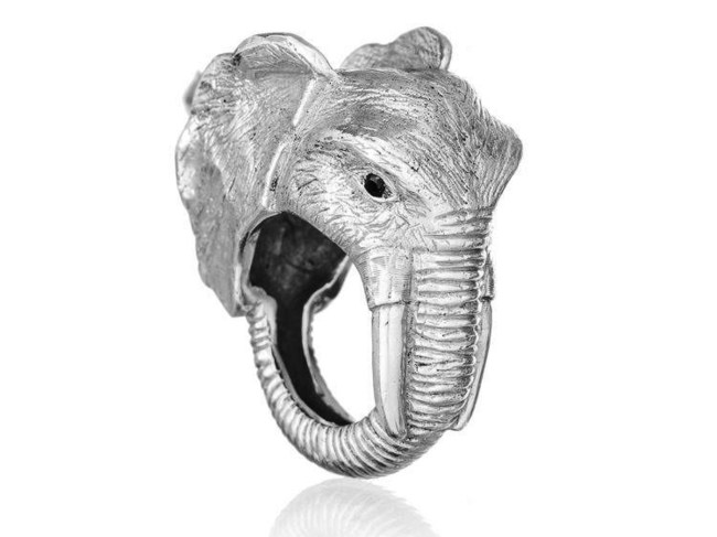 Elephant Conservation Ring