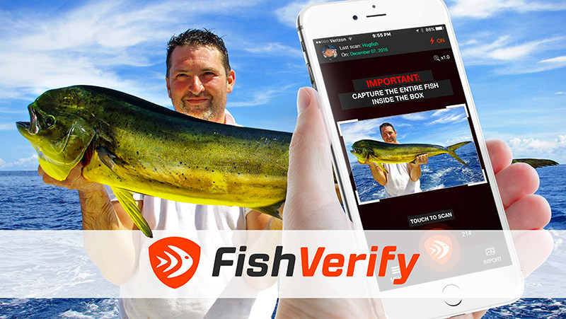 New app identifies fish informs of regulations in seconds for Fishing license app